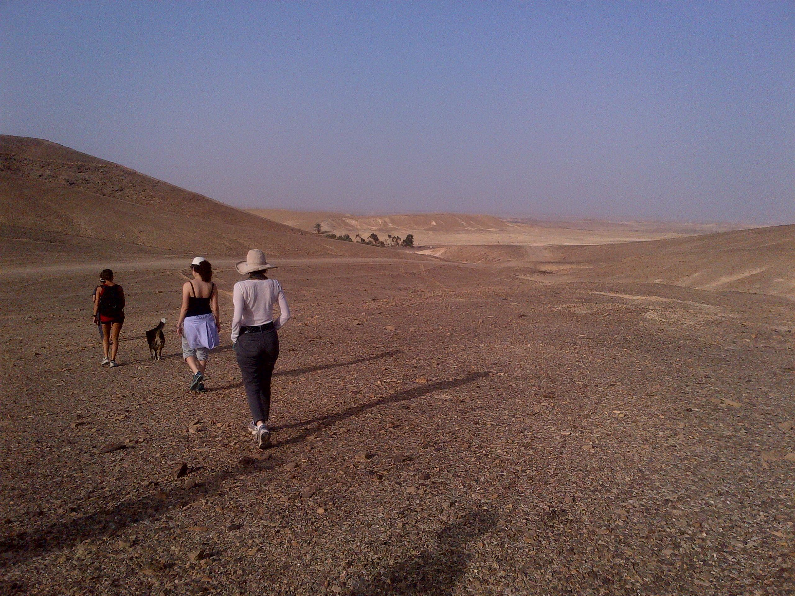הליכת משך במדבר שליד נאות סמדר
